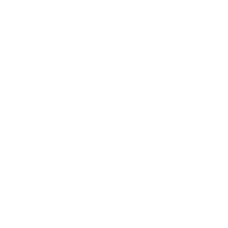 Roya Jade Photography logo